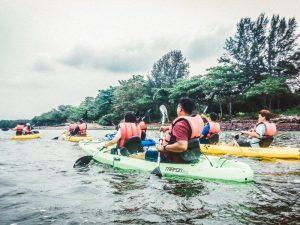 Mangrove_Kayaking_2_793a92f2-ec46-42e3-bb1f-5a01d89977a1_1024x1024